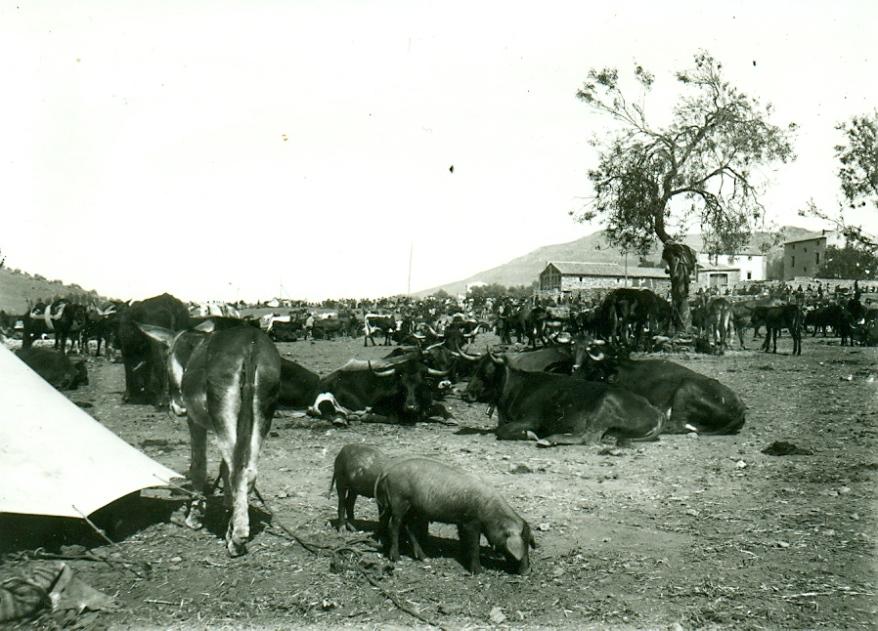 Feria de La Puerta1